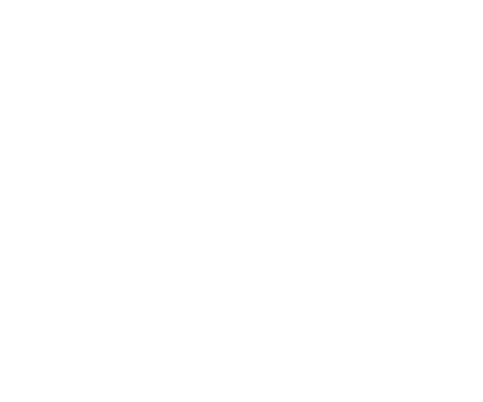 Bison Container Homes